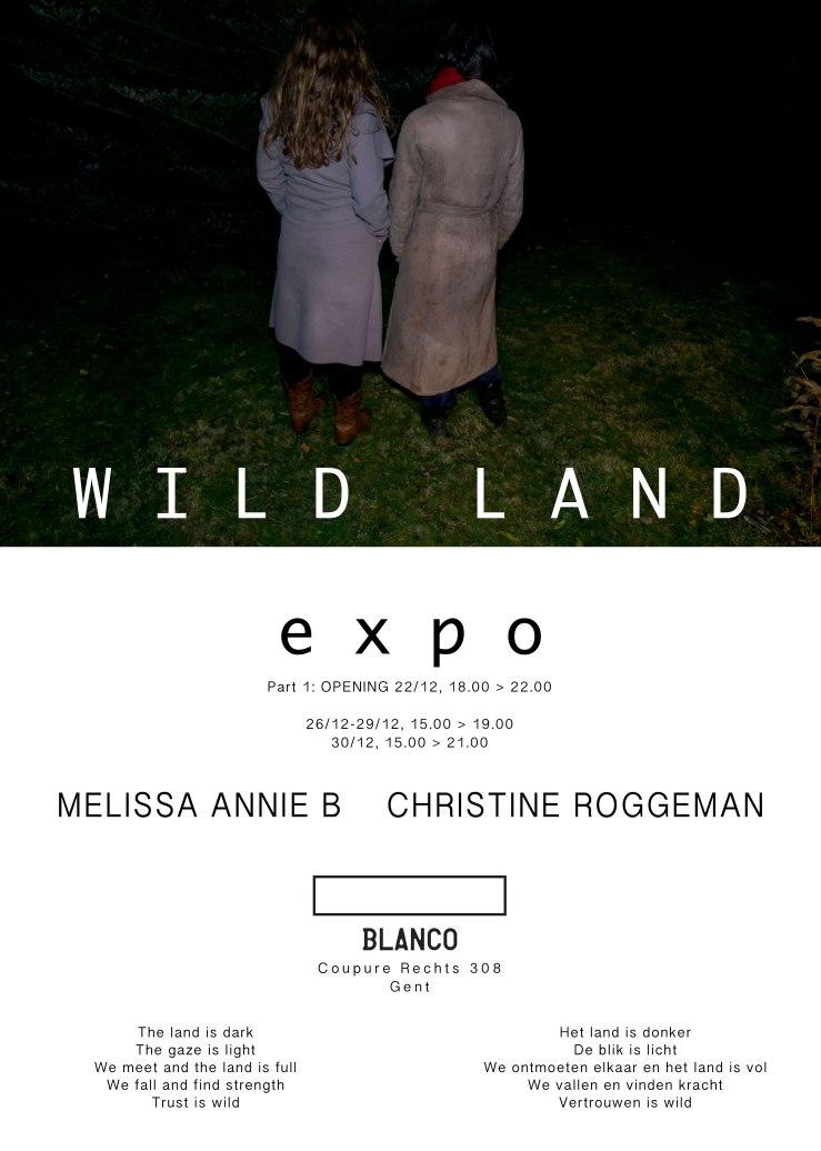 wild land flyer.jpg
